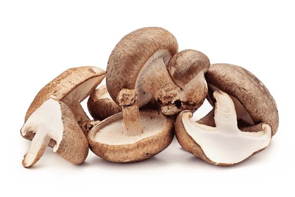 Nấm Đông Cô Tươi chứa nhiều đạm, vitamin - Thực phẩm Đồng Xanh