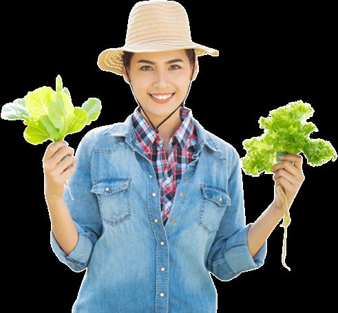 Chuyên cung cấp các mặt hàng rau, củ, quả