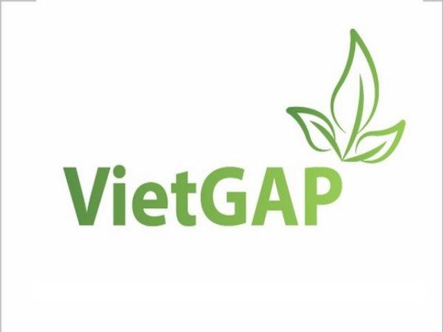 Lợi ích từ VietGap