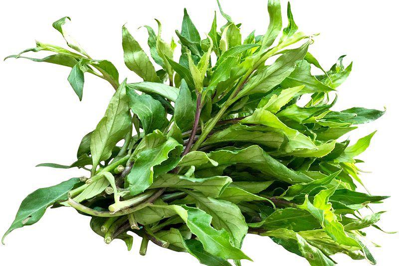 Rau rừng Gia Lai còn được biết đến với tên gọi khác là rau lủi rừng
