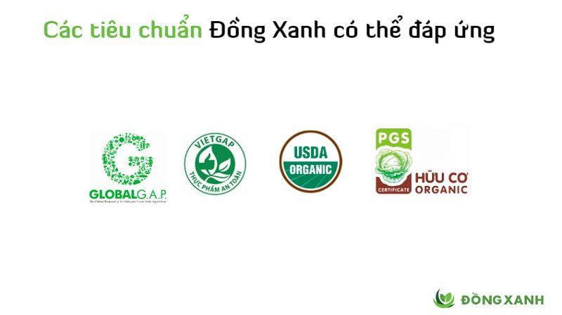 Thực Phẩm Đồng Xanh chuyên cung cấp rau lủi rừng giá rẻ, chất lượng